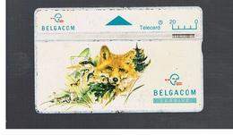 BELGIO (BELGIUM) -  1994  ANIMALS: FOX     - USED - RIF. 10827 - Belgium