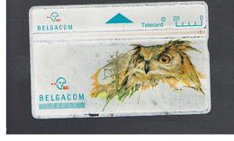 BELGIO (BELGIUM) -  1994  ANIMALS: OWL    - USED - RIF. 10828 - Belgium
