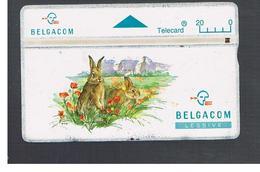 BELGIO (BELGIUM) -  1994  ANIMALS:  RABBITS   - USED - RIF. 10828 - Belgium