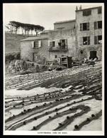 1960  --  SAINT TROPEZ  SECHAGE DES FILETS PRES DU PORT   3P469 - Non Classés