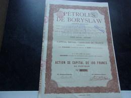 PETROLES DE BORYSLAW - Actions & Titres