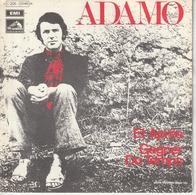 S Adamo Et Après - Special Formats