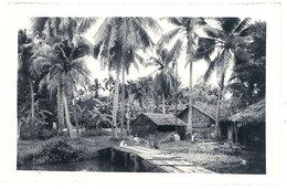 Cpsm Sud Vietnam - Giadinh Le Chemin Des Cocotiers - Viêt-Nam