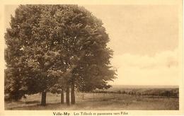 Ville-My (Ferrieres). Les Tilleuls Et Panorama Vers Filot - Ferrières