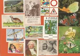Lot Images Album DIVERSES Dont Cadeau BONUX - Liste Avec N° Dans Annonces - Chromos