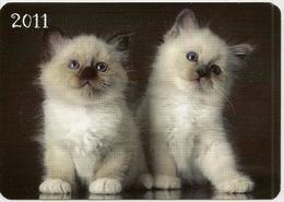 Calendar Of Latvia - 2011 - Kittens - Animals - Beautiful - Calendars