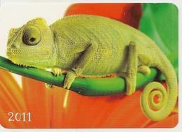 Calendar Of Latvia - 2011 - Chameleon - Animals - Beautiful - Calendars