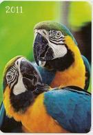 Calendar Of Latvia - 2011 - Parrots - Birds  - Animals - Beautiful - Calendars