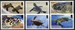 BIOT, 2005, MARINE FAUNA, TURTLES, YV#305-10, MNH - Britisches Territorium Im Indischen Ozean