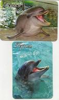 Calendars Russia - 2017 - 2 Pcs. - Crimea - Dolphins - Sea - Advertising - Beautiful - Animals - Calendars
