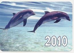 Calendars Russia - 2010  - Dolphins - Sea - Advertising - Beautiful - Animals - Calendars