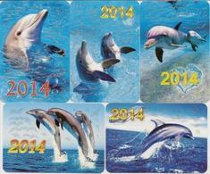 Calendars Russia - 2014 - 5 Pcs.  - Dolphins - Sea - Advertising - Beautiful - Animals - Calendars