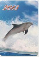 Calendars Russia - 2013 - Dolphins - Sea - Advertising - Beautiful - Animals - Calendars