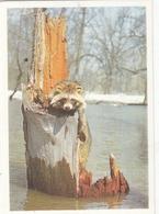 CALENDARIC. 1990 RECT.  RUSSIA.*** - Calendars