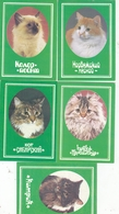 CALENDARIC. 1991 THE PERFECT CATS. RUSSIA. LENINGRAD. 5 ITEMS.*** - Calendars