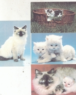 CALENDARIC. 1992 THE PERFECT CATS. RUSSIA. 4 PIECES *** - Calendars