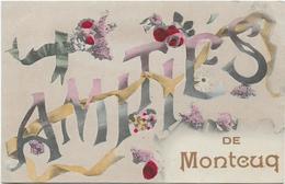 46 Amitiés De MONTCUQ - Montcuq