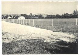 Cpsm Sénas - Le Stade Municipal - France