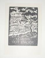 Ex-libris Moderne XXème Illustré -  Allemagne - VEIT BAUER - Ex-libris