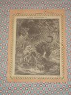 Couverture Illustrée D'ancien Cahier D'écolier - Combat D'un Tigre Et D'un Crocodile - Fin XIXe - Blotters