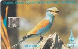 Gambia -  Kingfisher (CN: C511) - Gambia