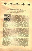 Ein Männlein Steht Im Walde...(Karl Wiedemann Ueber Pilze) / Plauderei, Entnommen Aus Kalender / 1910 - Books, Magazines, Comics