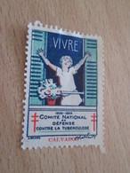 TIMBRE OU VIGNETTE ANNEE 1928-1929 ANTI TUBERCULOSE  DEPARTEMENT CALVADOS - Fantasy Labels