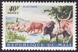MALI  1961 - Y&T  27 -  Elevage   -  NEUF** - Mali (1959-...)