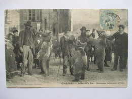 TONNERRE  89   BOHEMIENS MONTREURS D'OURS   (SCENES DE LA RUE )         TRES ANIME     PTS . PLIS DE COIN - Tonnerre