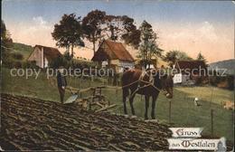 71861752 Westfalen Region Landwirtschaft Plug Pferd Bauernhaus Land Und Leute We - Melle