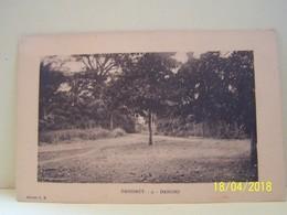 DANGBO (BENIN) DAHOMEY. LES ARBRES. - Benin