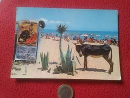 TARJETA POSTAL 940 COSTA DEL SOL TORREMOLINOS MÁLAGA PLAYA DE MONTEMAR CON CARTEL DE TOROS. BURRO DONKEY POST CARD VER F - Donkeys