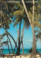 MARTINIQUE (972) - SAINTE-ANNE - Plage Des Salines - 1989 - Exbrayat - Autres