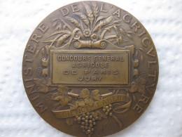 Medaille Concours Général Agricole De PARIS, JURY, Par A. DUBOIS - Ohne Zuordnung