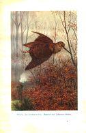 Oculi, Da Kommen Sie (Aquarell Von Johannes Gehrts) / Druck, Entnommen Aus Kalender / 1910 - Books, Magazines, Comics