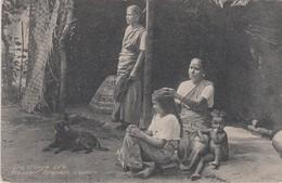 CEYLON - Sri Lanka (Ceylon)