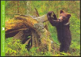 Belarus 2011 Bear Fauna - Belarus