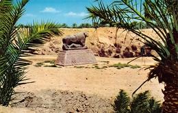 Iraq Babylon Babylone Abdul Reza Salmin 238 - Iraq