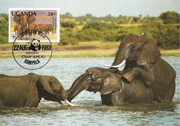 1983 - UGANDA Kampala - Savanna Elephant - Uganda