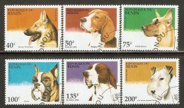 Benin 1995 Mi# 675-680 Used - Dogs - Benin - Dahomey (1960-...)
