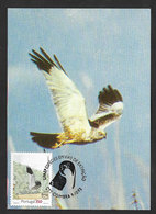 Portugal Oiseau Busard Saint-Martin Rapaces Carte Maximum UPAEP 1993 Hen Harrier Birds Of Prey Maxicard - Águilas & Aves De Presa