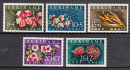 Suriname MNH NVPH Nr 379/83 From 1962 / Catw 3.50 EUR - Suriname