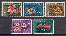 Suriname MNH NVPH Nr 379/83 From 1962 / Catw 3.50 EUR - Surinam