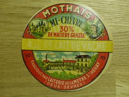 Mothais Mi-chèvre Laiterie De La Mothe St Héray - Cheese