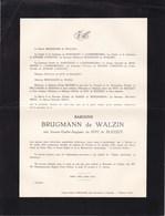 Château De WALZIN DREHANCE Jeanne Du ROY De BLICQUY Baronne BRUGMANN De WALZIN 1884-1941 D'ANSEMBOURG - Avvisi Di Necrologio