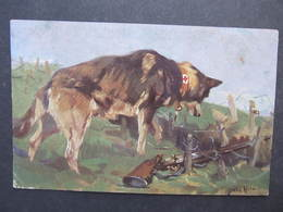 AK HUND DOG 1WK Rettungshund 1916  Feldpost Sanitätshund//  D*31324 - Hunde