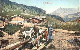 12337570 Bretaye Panorama Brunnentrog Ziegen Bretaye - Suisse