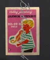70-136 CZECHOSLOVAKIA 1957 Big Autumn Fair Trnava 20.-22.9.1957 - Velky Jesenny Jarmok Trnava - Boites D'allumettes - Etiquettes