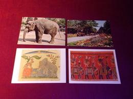 LOT DE 4 CARTES  POSTALES  SUR  LE THEME  DES  ELEPHANTS - Elephants