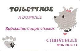 Carte De Visite - Toilettage à Domicile Spécialités Coupe Ciseaux - Christelle - [chien - Oleron] - Cartoncini Da Visita